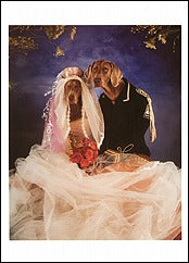 Happily Ever After, 1992 Notecard - ImageExchange