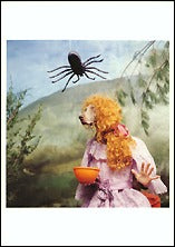 Little Miss Muffet, 1996 Postcards (Set of 12) - ImageExchange