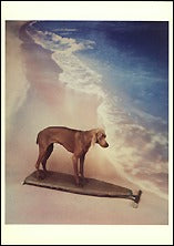 Surfboard, 1991 Postcards (Set of 12) - ImageExchange