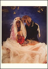 Happily Ever After, 1992 Postcards (Set of 12) - ImageExchange