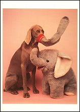 Elephants, 1993 Postcards (Set of 12) - ImageExchange