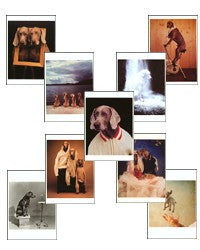 Wegman Mega Set Postcards (Set of 84) - ImageExchange