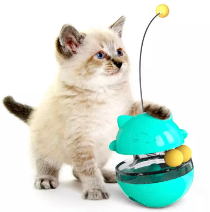 2in 1 interactive Cat food Dispensing ball