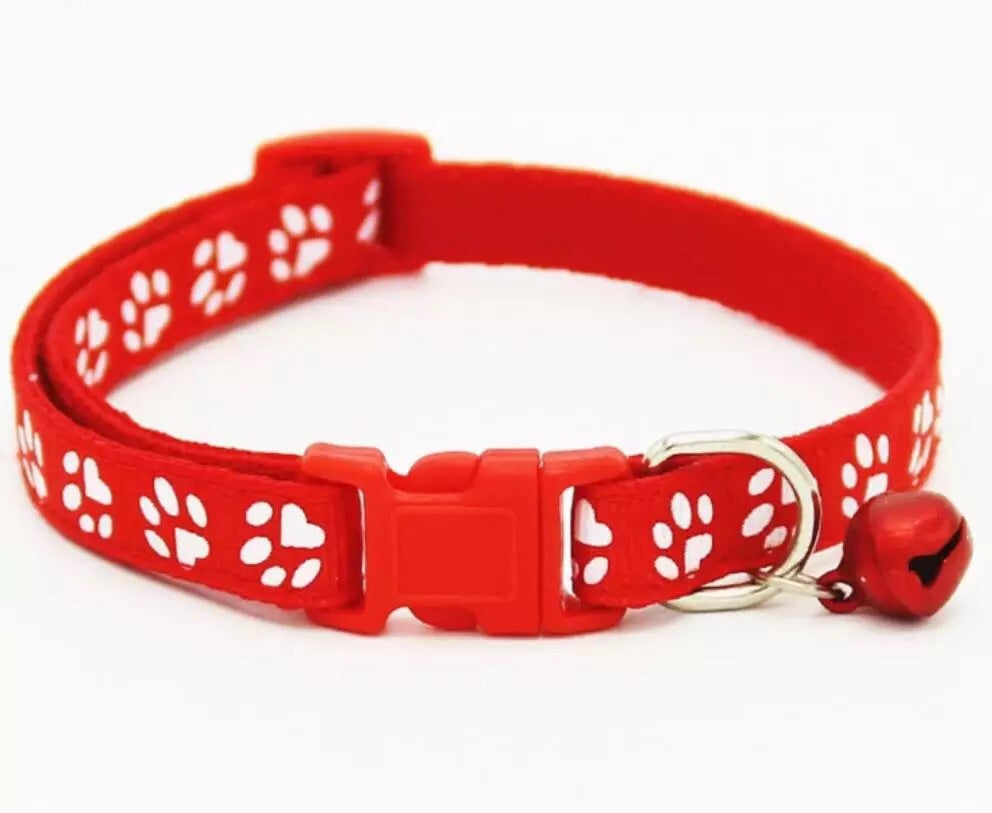 Collar for cats or small dogs
