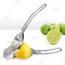 Citrus Squeezer with Bottle Opener - Stainless Steel