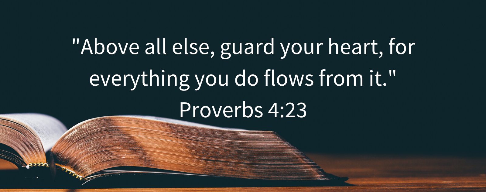 """Above all else, guard your heart, for everything you do flows from it."" Proverbs 4:23"