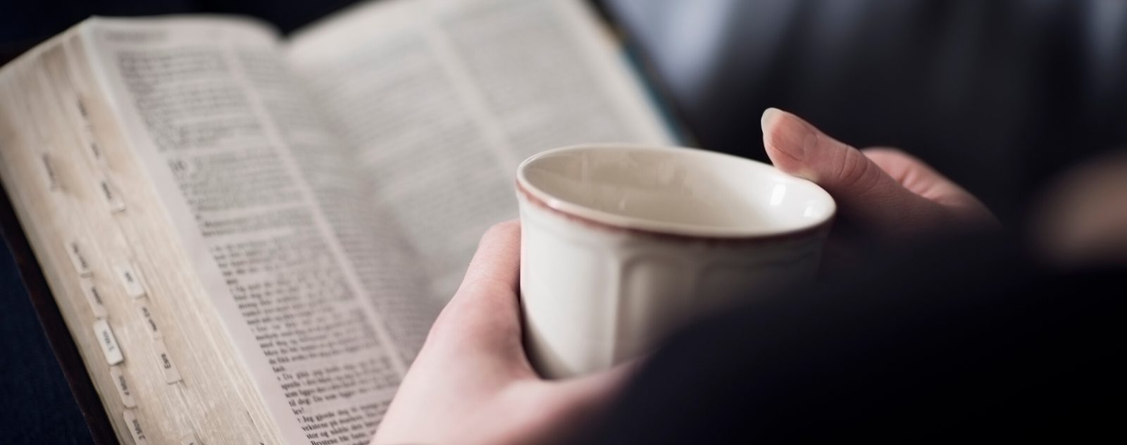 The Gospel of matthew for a Bible Study