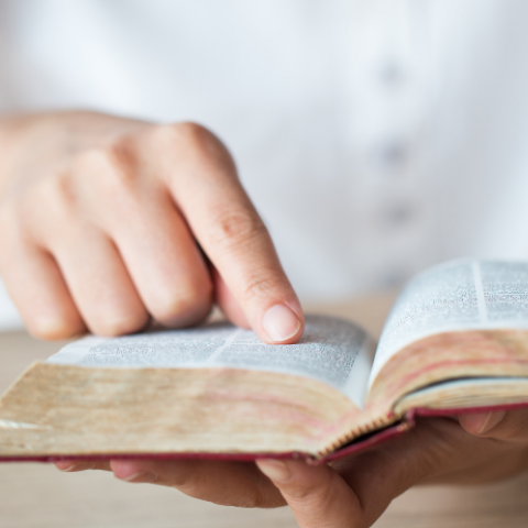 What to Read in the Bible for Encouragement