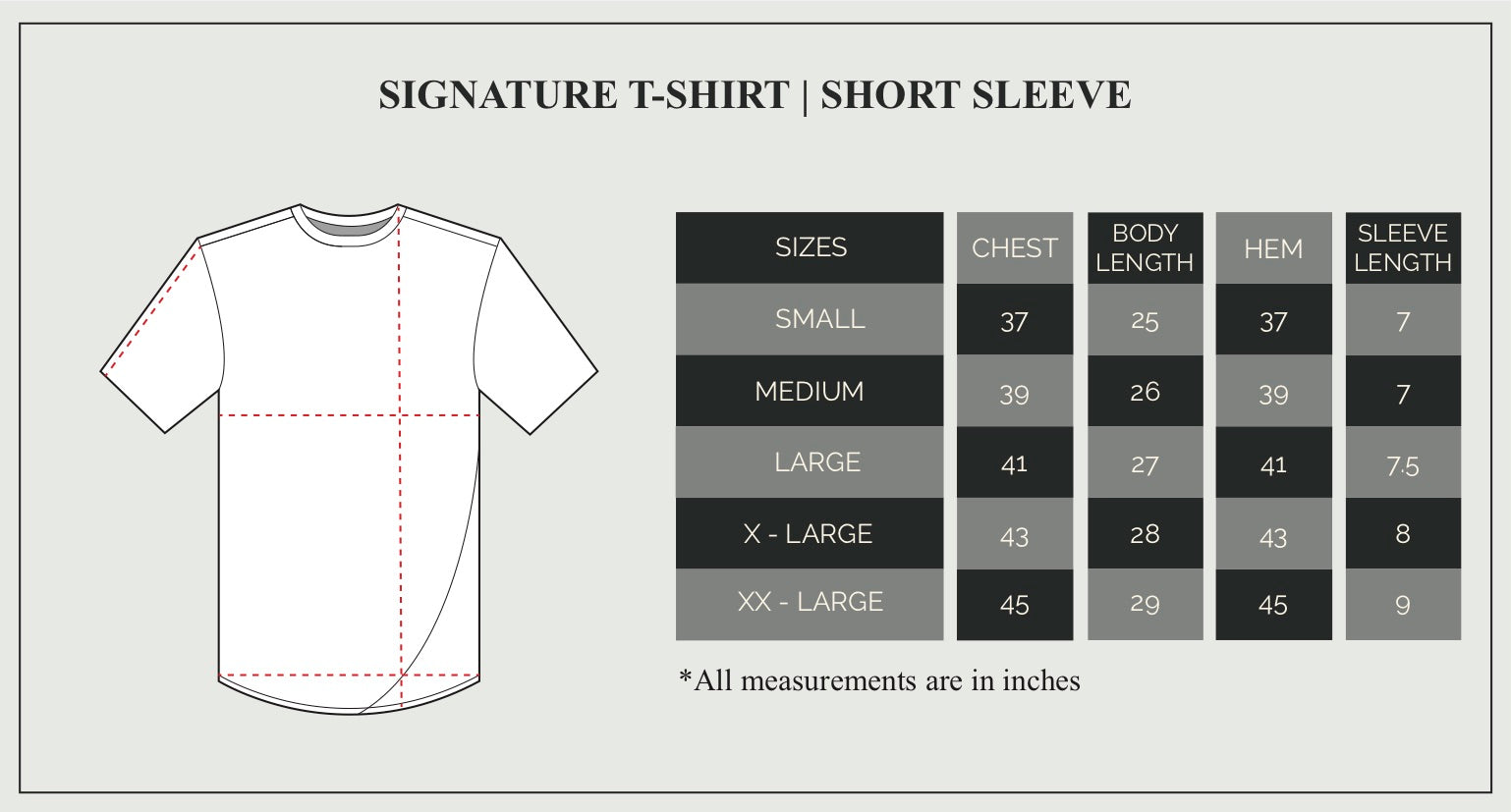 Signature T-Shirt Size Guide