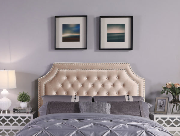 Iconic Home Chava Bacchus Horus Leda Argus, Headboard Button Tufted Velvet Upholstered Double Row Nailhead Trim Taupe Main Image