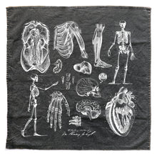 Load image into Gallery viewer, Dr. Jekyll Anatomy Sketches Towel