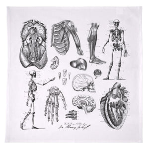 Dr. Jekyll Anatomy Sketches Towel