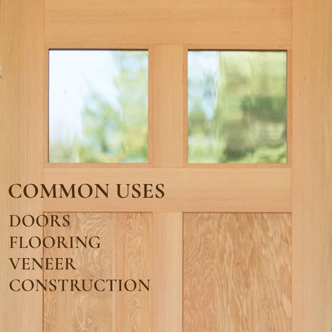 RealCraft Wood Species 101 series: Douglas Fir Common Uses
