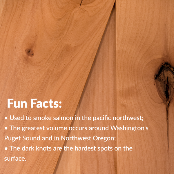 fun facts about Knotty Alder