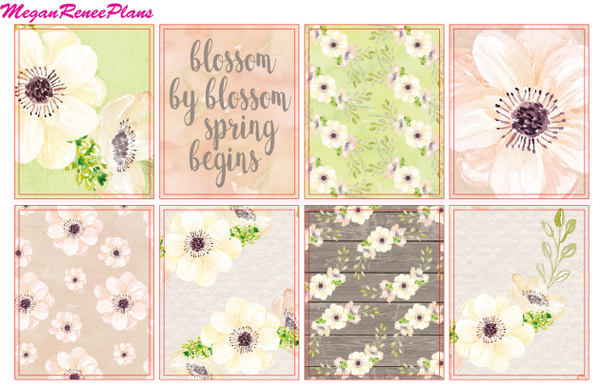 Blossom - FULL BOXES ONLY - MeganReneePlans