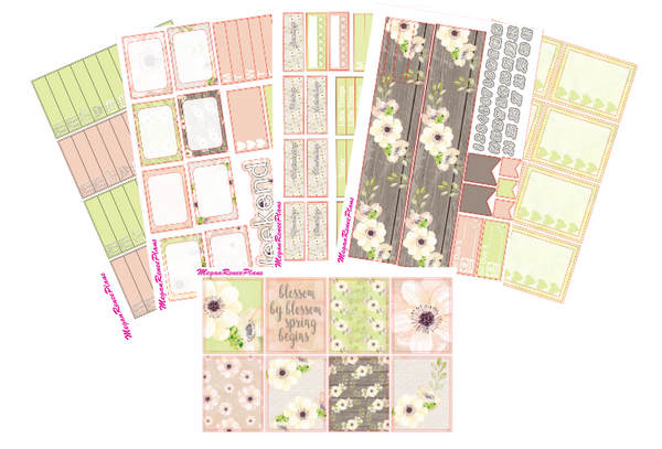 Blossom Weekly Kit for the Classic Happy Planner - MeganReneePlans