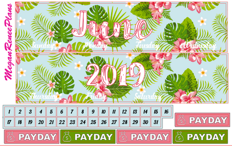 June 2019 Monthly View Planner Kit for the Erin Condren Life Planner