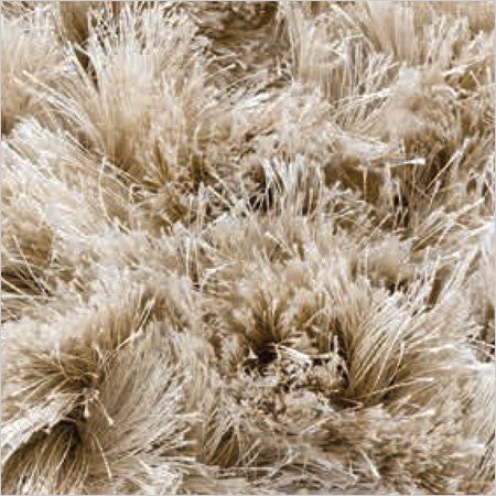 Area Rug Long Fluffy Pile Color Options Canvas
