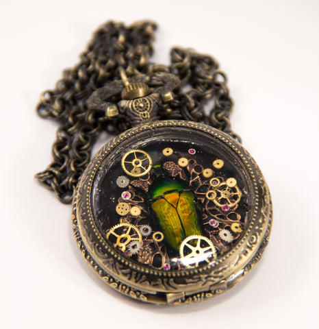 steampunk, pocket watch, bug, necklace