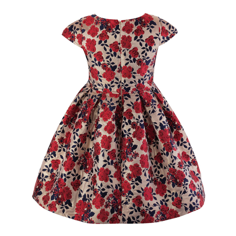 Red Rose Damask Party Dress