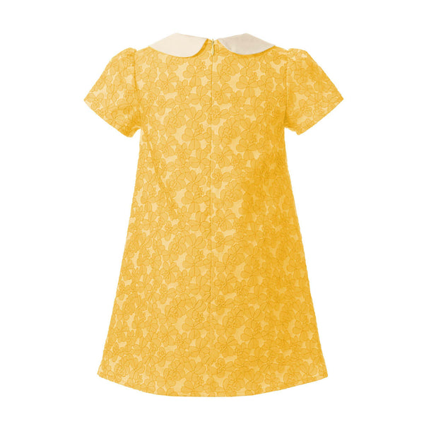 Peter Pan Collar Damask Shift Dress