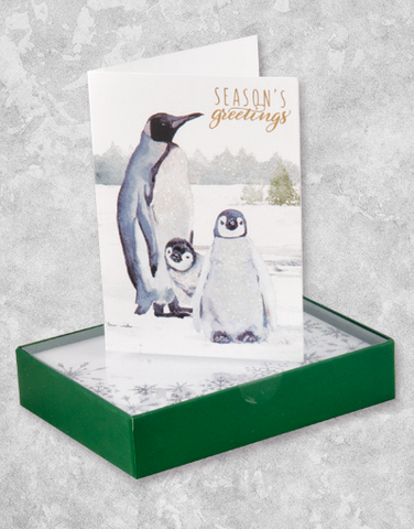 Penguin Family (16 Count Boxed Christmas Cards)