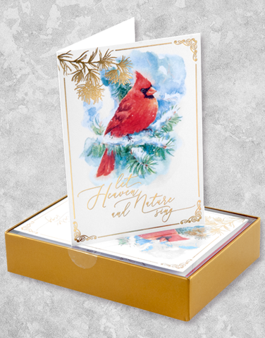 Heavenly Cardinal (16 Count Boxed Christmas Cards)