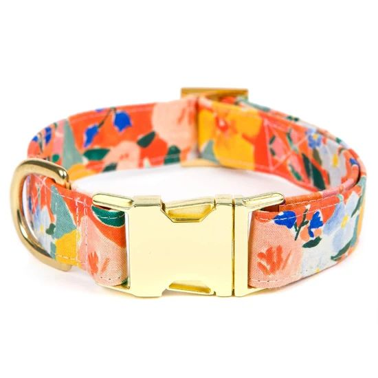 Clementine Dog Collar - Medium