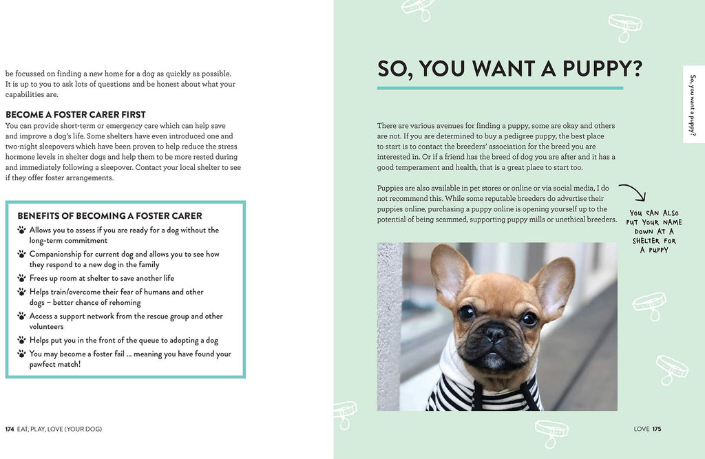 Eat, Play, Love: The Ultimate Guide for Every Dog Owner