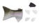 SB60 FIN & TAIL SET RAINBOW TROUT