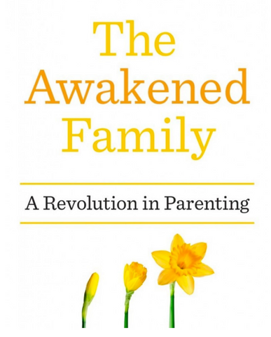 The Awakened Family new parenting ideas on Little Citizens Boutique