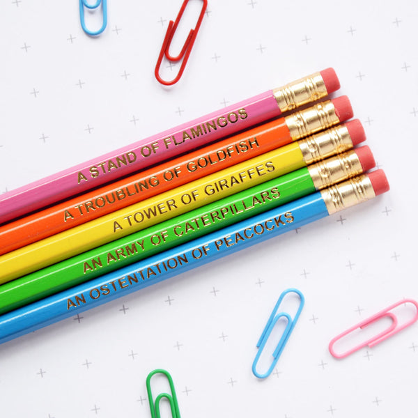 Rainbow Animal Nouns Pencil Set by Newton and the Apple