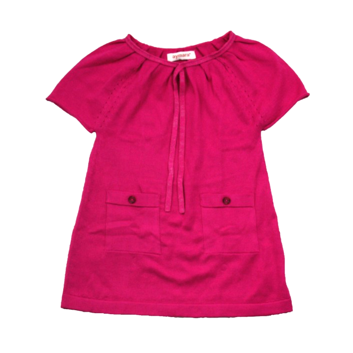 Violeta Dress in Berry - Little Citizens Boutique  - 1