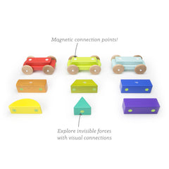 Tegu Shape Train Magnetic Building Toy
