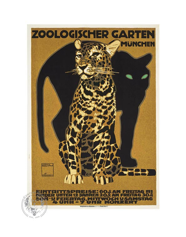 Munich Zoo, Big Cats (11x14 Patronage Print #39)
