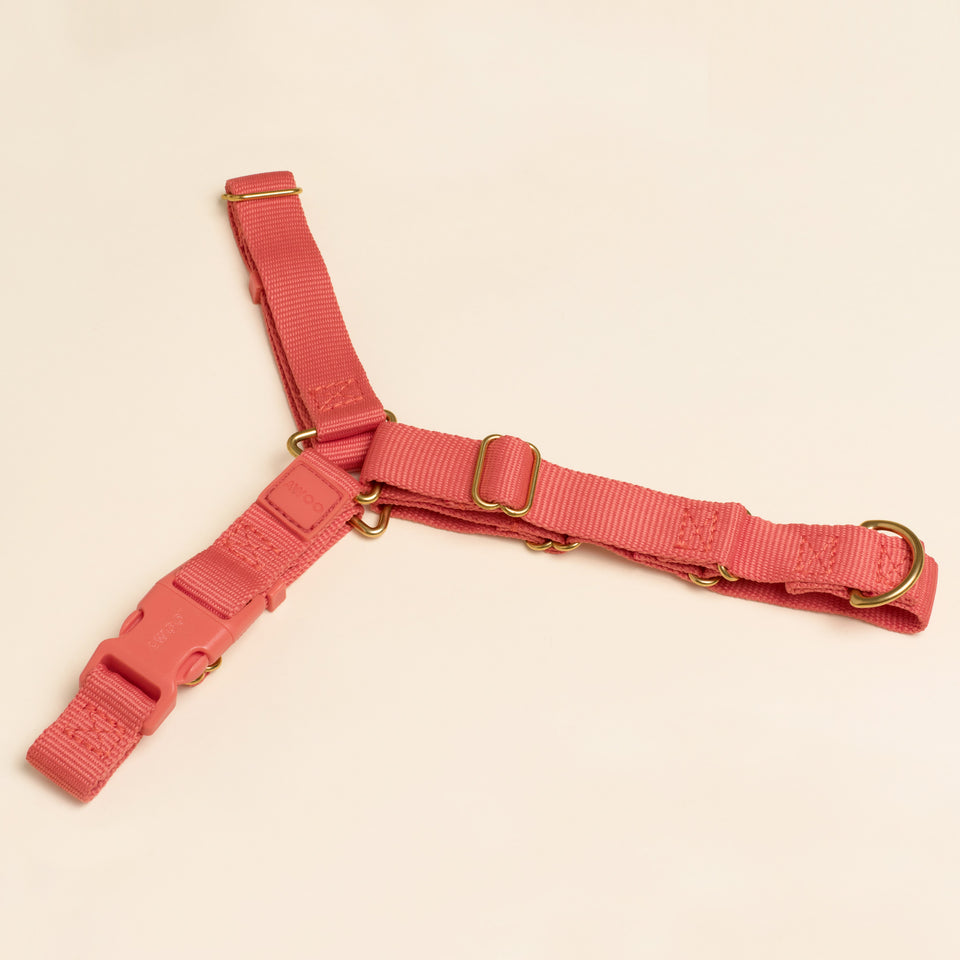 ROAM HARNESS: spice