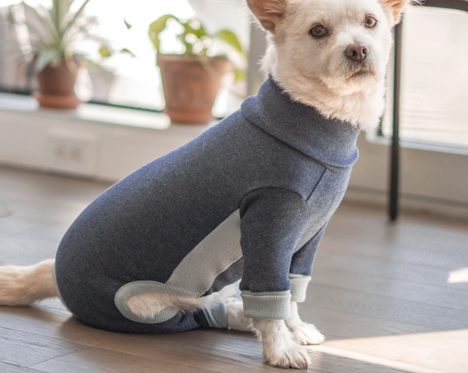 LE CHIEN CÂLIN jumpsuit (navy)