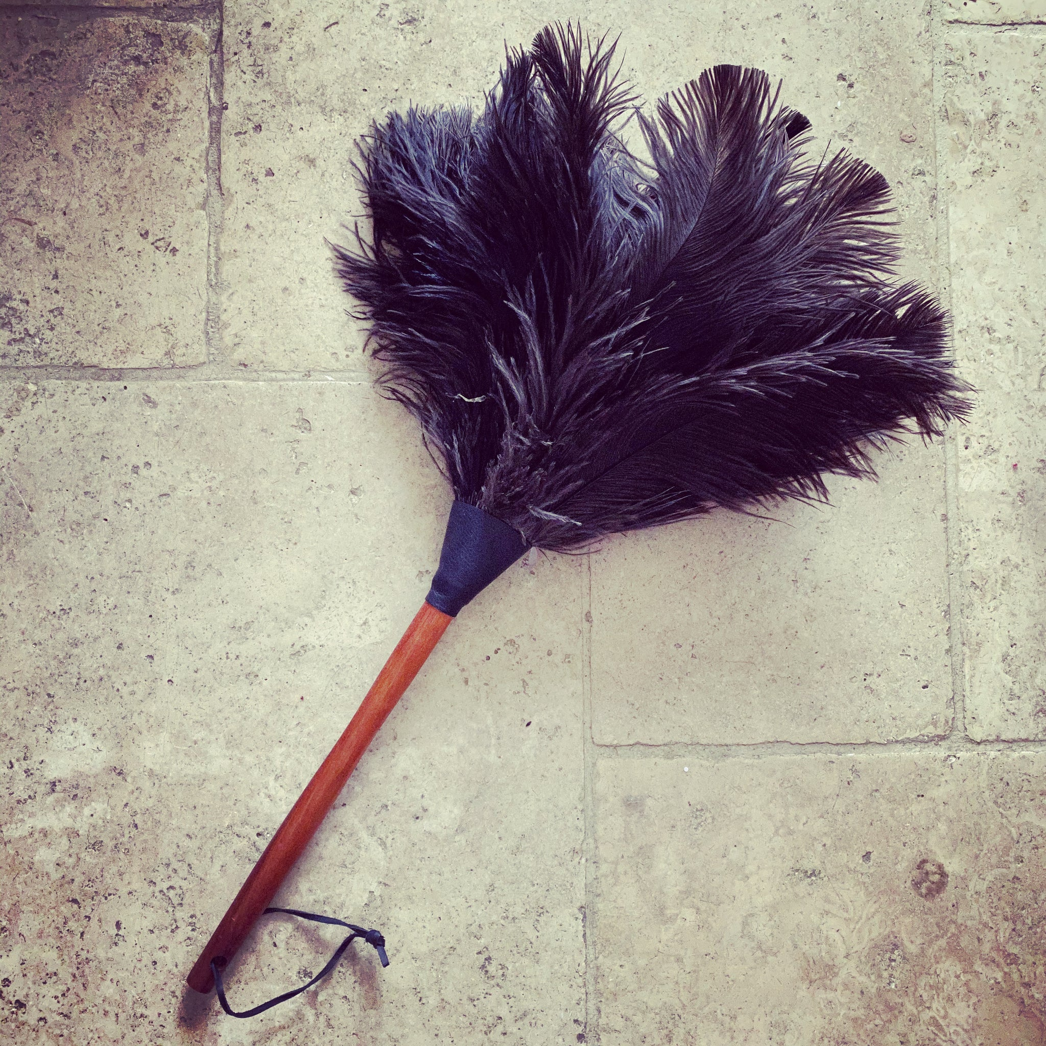 Ostrich Black Feather Duster - 50cm