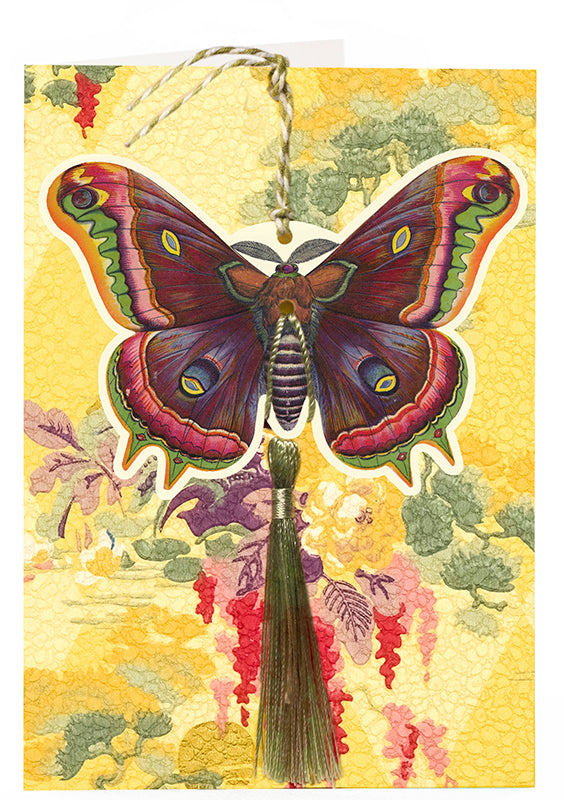 Madame Treacle Fandangle Card - Butterfly