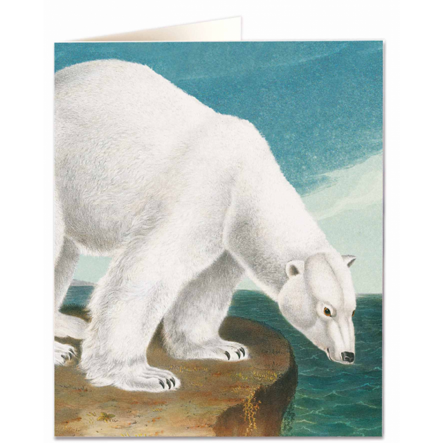 Card - Polar Bear