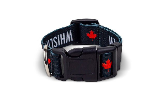 WHISLIFE Dog Collar
