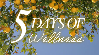 5 DAYS OF WELLNESS<br>Treat Your Skin From Within