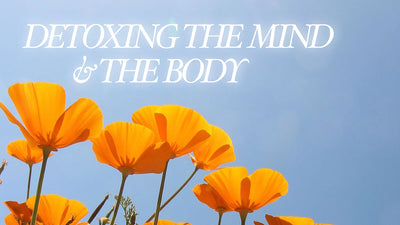 Detoxing the Mind & the Body