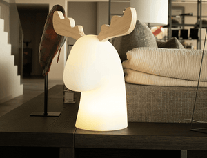 EdenMix - RUDOLPH - Home&Garden - Garden furniture - Light decoration