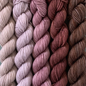 ANTIQUE SHOP // Bite-Size Mini Set of 5 // Hand Dyed Yarn
