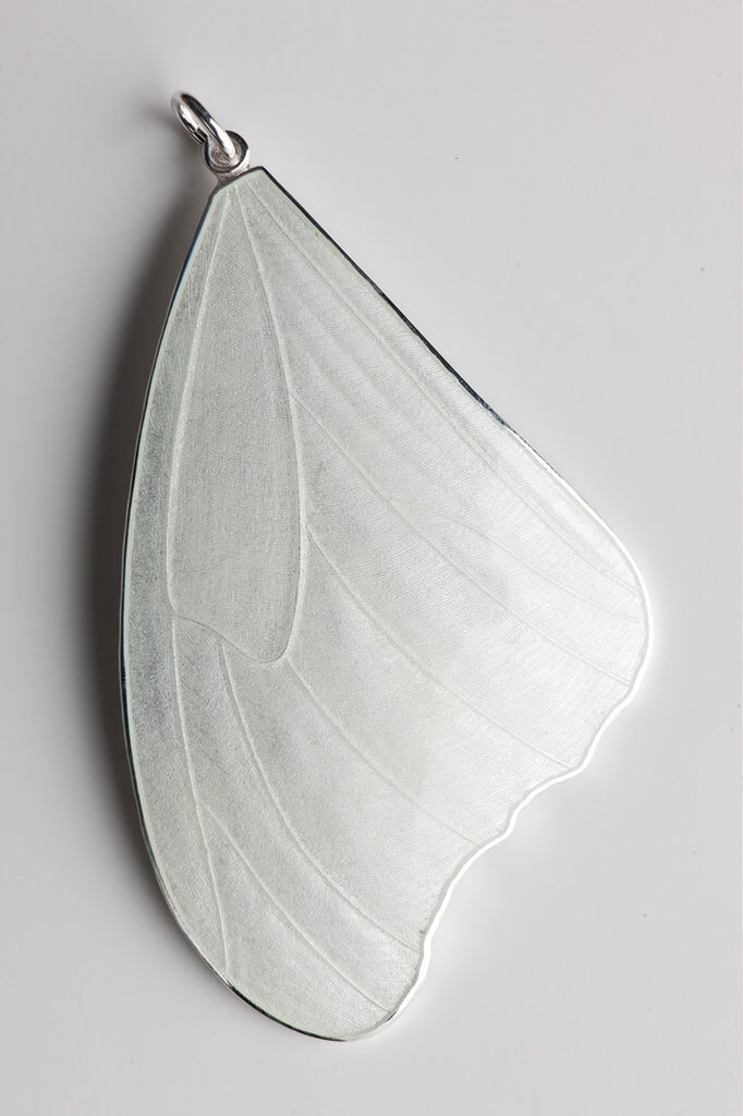 LARGE BUTTERFLY WING from THE ENAMEL BY CAMILLA PRYTZ