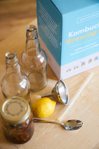 kombucha home fermentation bottle with kit
