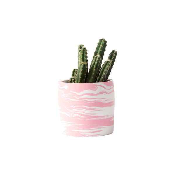 Medium Pink & White Marble Pot