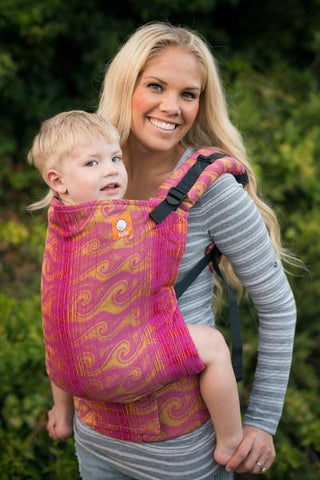 Full Standard WC Carrier - Tide Explore Wrap Conversion - Baby Tula