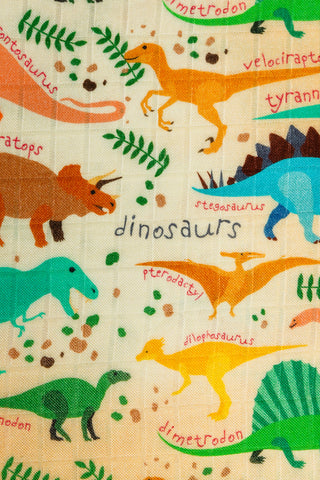 Jurassic - Tula Cuddle Me Baby Throw Blanket